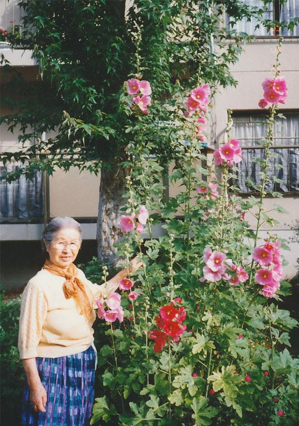 shisuko Tohmoto
